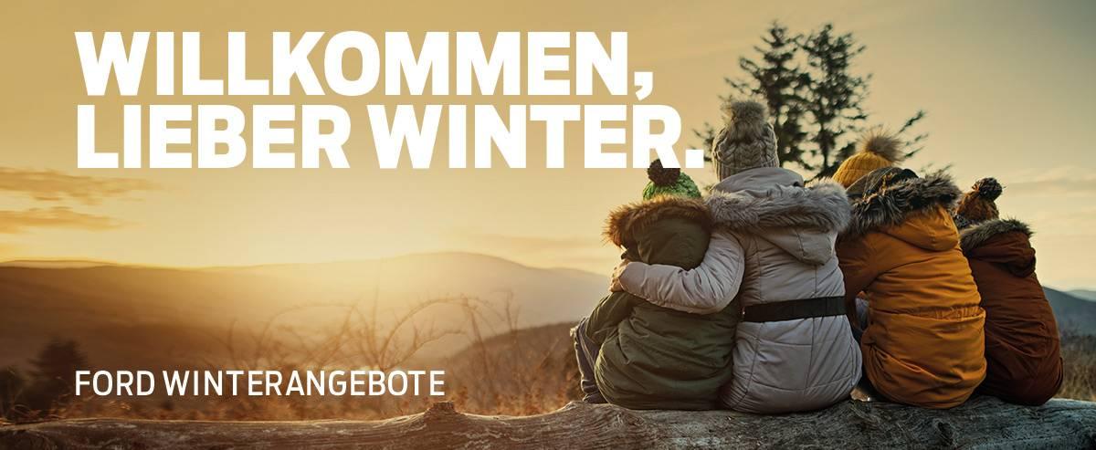 Winter-Check bei Auto Pichler GesmbH in Asten